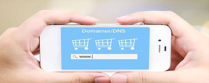 Domæner/DNS